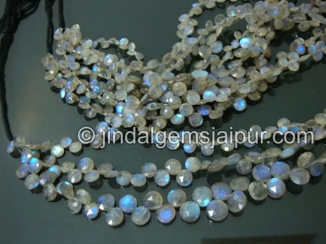 Labradorite Faceted Coin Gemstone Beads.