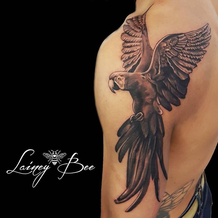 Best 25 parrot tattoo ideas on pinterest watercolor for Revival tattoo and piercing