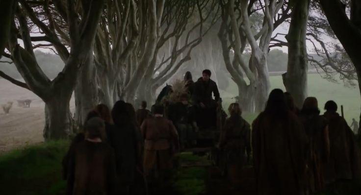 Nordirland, Dark Hedges – Vägen från King's Landing #Ireland #Nordirland #Game #of #Thrones #GameOfThrones #DarkHedges #Dark #Hedges #Kings #Landing #KingsLanding #TV #Inspelning #Europe