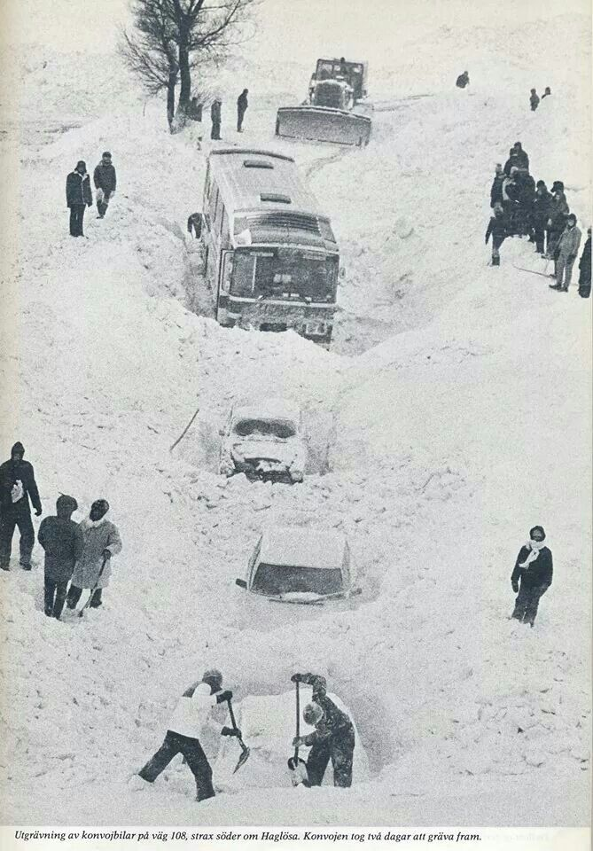 The winter of 1979, Skåne, South of Sweden.