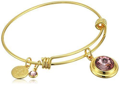 "Women's ""Birth Month"" Crystal Bangle Bracelet Jewelry Gift"