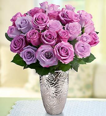 Love purple roses. I grew up with these in my front yard. They have the best fragrance ever.