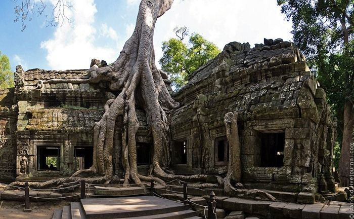 Ta Prohm is a temple at Angkor, Cambodia, built in the late 12th and early 13th centuries. Located approximately one kilometer east of Angkor Thom and on the southern edge of the East Baray near Tonle Bati, Ta Prohm has been left in much the same condition in which it was found. Huge trees, reminiscent of ancient redwoods and oaks, are blended into the walls, and rocks hugging the giant roots gives the temple a surreal appearance.