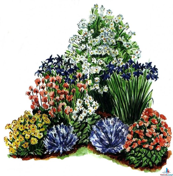 Декоративный угловой цветник