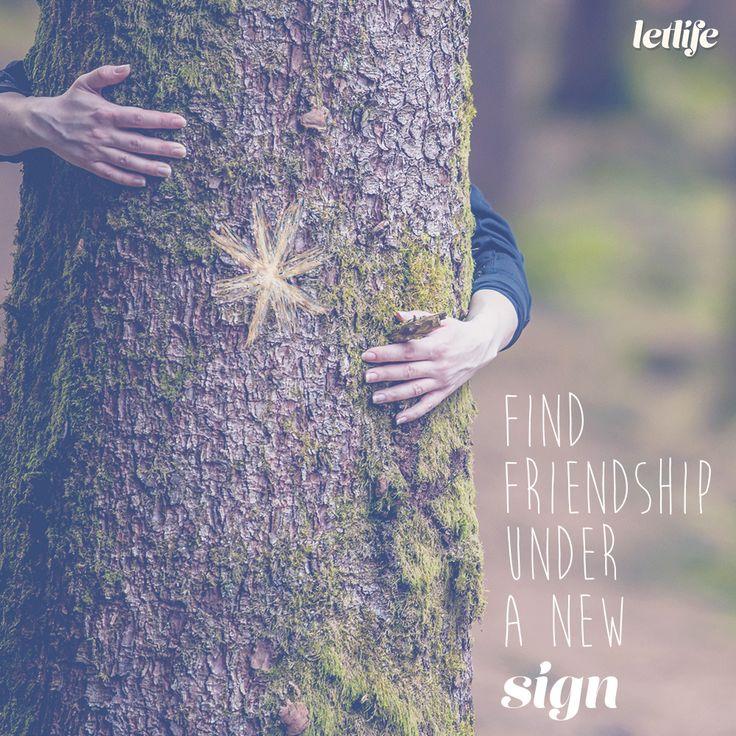 Find friendship under a new sign.