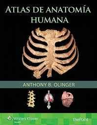 Atlas de Anatomia Humana (Spanish) Paperback ? Import 19 Aug 2016
