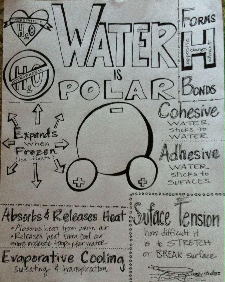 We Teach High School: Summary sheets