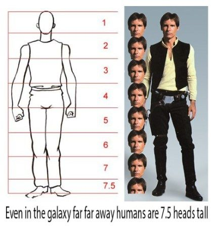 Han Solo is 7.5 heads tall. :)