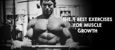 The 9 Best Exercises For Muscle Growth | THEBODYBUILDINGBLOG