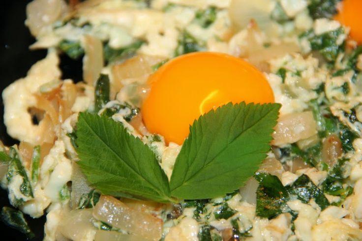 Godt og Sunt: Skvallerkål i Omelett