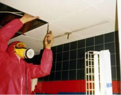 Asbestos Drop Ceiling #Asbestosremoval #Asbestosabatement #Asbestosremediation