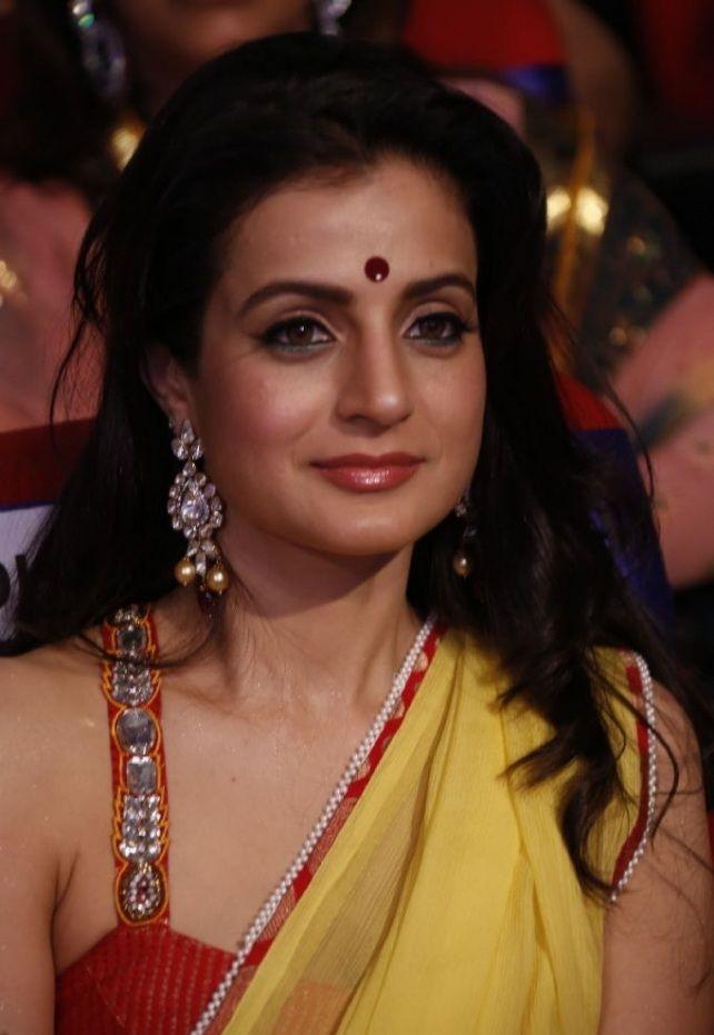 amisha-patel-hot-saree-photos (3)