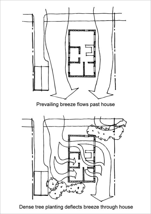 Two versions of the same house on a residential site. In the first version, there is no vegetation around the house and the breeze flows past the house.<br /> In the second version, shrubbery has been placed in the path of the breeze so that the breeze is diverted into the house windows.