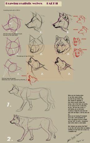 Wolf zeichnen In verschiedenen Schritten Mit Hilfslinien