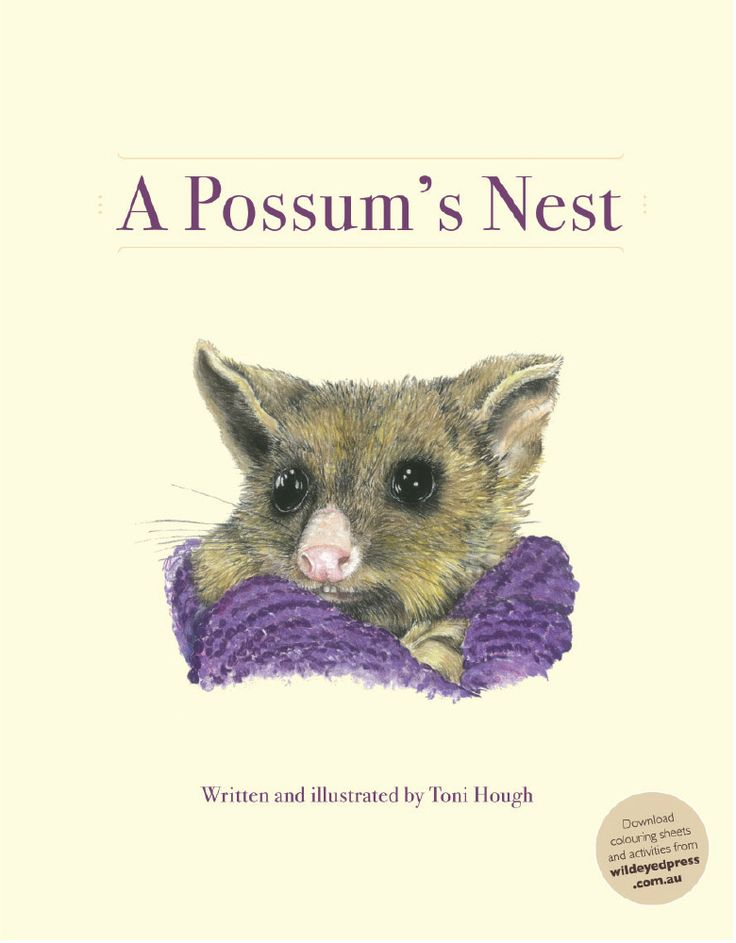 A Possum's Nest by Toni Hough, Artwork by Toni Hough When Lily finds a baby possum on the lawn she begins a quest to find his home. In her journey through the Australian bush she encounters the nests of many different bush creatures. This whimsical tale is beautifully told and illustrated with charming images of the Australian bush. http://www.romanticflairoriginal.com/shopexd.asp?id=1194