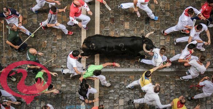 الثور في المنام تفسير الامام الصادق 1 Animals Cow Goats