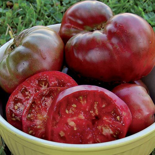 Black Krim Tomato Tips For Growing Tomatoes Growing 400 x 300
