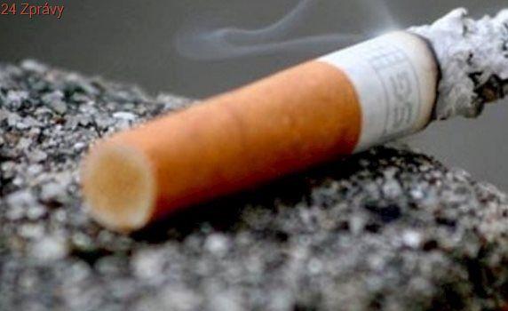 Po zákazu kouření mají nezměrnou výhodu restaurace se zahrádkou