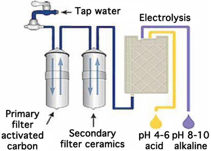 life ionizer vs kangen comparison guide pdf