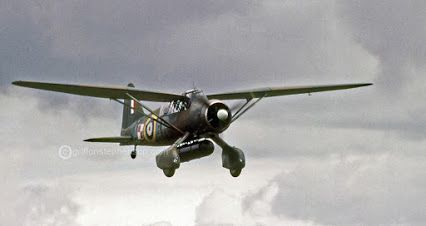Westland Lysander, in the colours and codes of 309 (Polish) Squadron R A F .