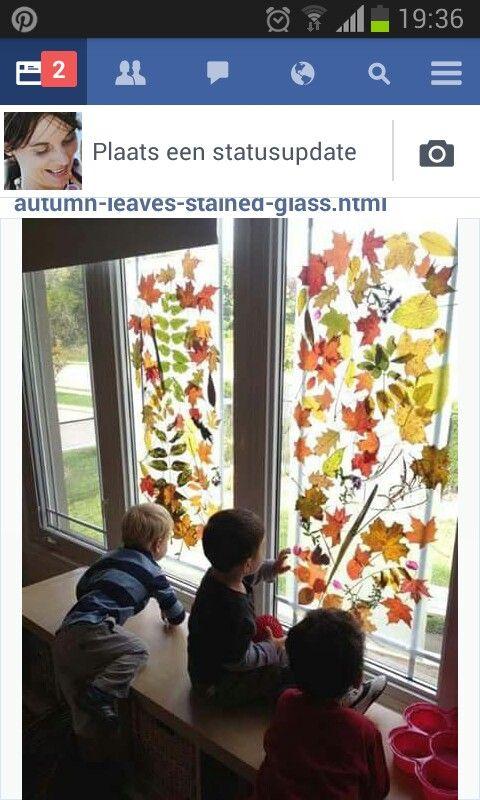 Bladeren met plakfolie op de ramen plakken.