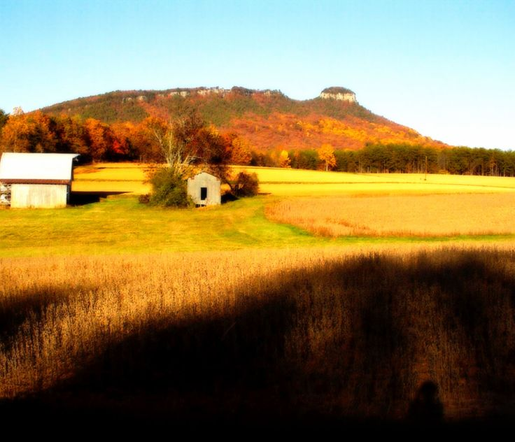 North Carolina farms, rural land, mountain land for sale