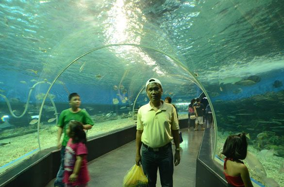 A pose for posterity at the acrylic underwater tunnel at the Manila Ocean Park in Manila, Philippines.