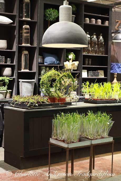 Kreations Indoor Gardening Center 96 best flower shop images on pinterest plants florists and garden shop via trdgrdsflow nordiska trdgrdar del 2 workwithnaturefo