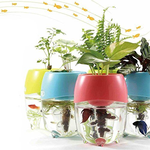 Aquaponic Fish Tank Aquarium for Betta Fish with Water Garden Planter Top Lid Natural Ecosystem for Plant Growth (Blue) - http://www.bunnybits.org/aquaponic-fish-tank-aquarium-for-betta-fish-with-water-garden-planter-top-lid-natural-ecosystem-for-plant-growth-blue/
