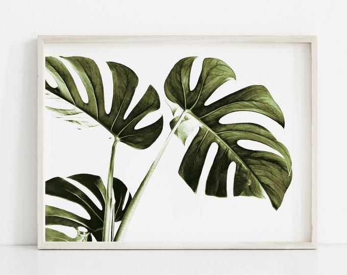 Monstera Leaf Art Print Minimal Botanical Prints Modern Botanical Wall Art Leaves Wall Art Dark Green Bota Botanical Wall Art Botanical Art Prints Leaf Art