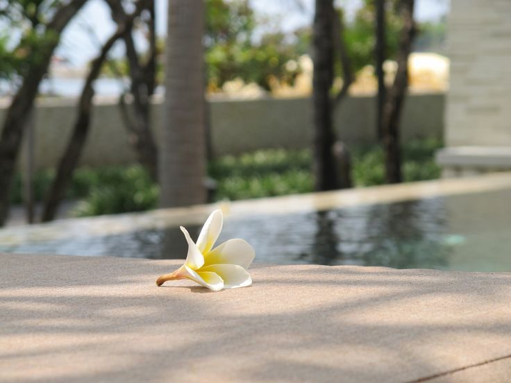 The little pieces of heaven in The Royal Santrian..  Book your Bali Accomodation with us website : www.theroyalsantrian.com email : reservation@theroyalsantrian.com  Luxury Beach Villa, Tanjung Benoa Bali,Indonesia