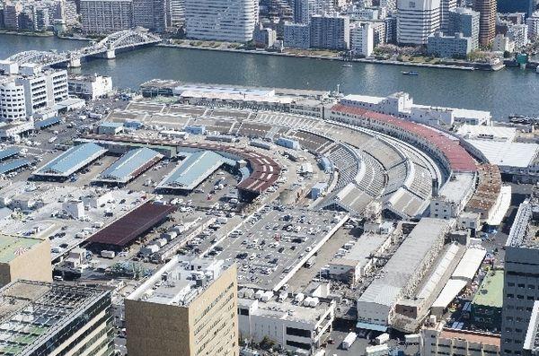 誰もが不安でいっぱいの築地市場移転 豊洲市場は無事に開場されるのか? | JBpress(日本ビジネスプレス)