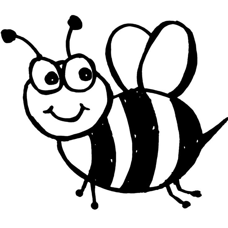 Fat Bees Interesting