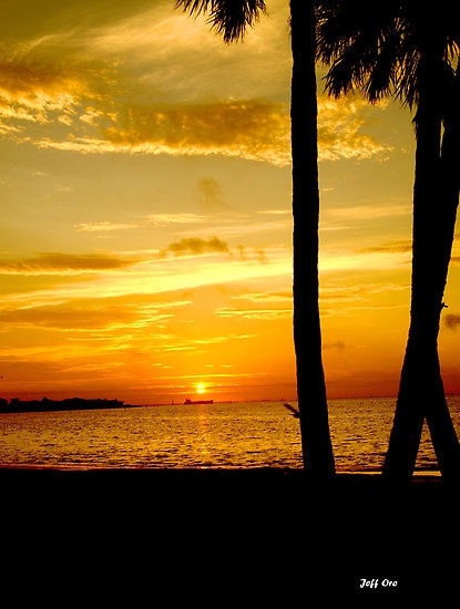 Tampa Bay sunrise - i wish i was home right now!!!!