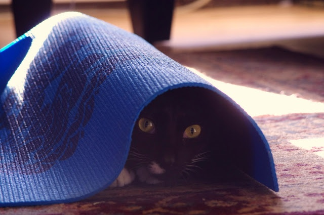 from under the mat