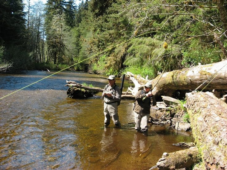 29 best saltwater fly fishing images on pinterest for Sitka alaska fishing