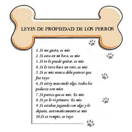 Leyes de propiedad de los perros