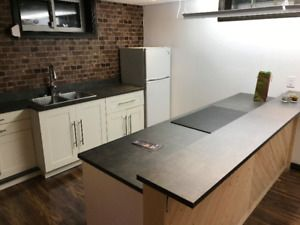 New Basement Suite For Rent in Allendale $1000 OBO All-In Feb 1