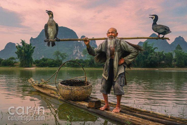 cormorant fisherman - Google Search | the fishing trip ...