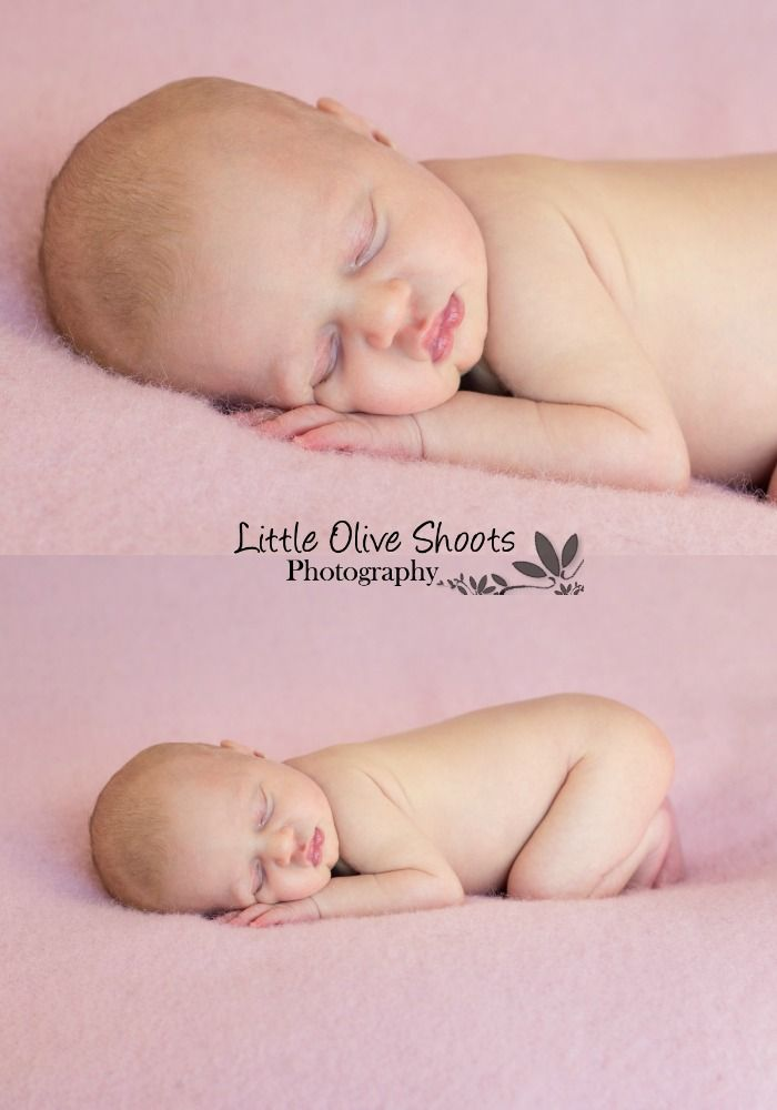 Baby girl newborn photography little olive shoots photography wellington new zealand