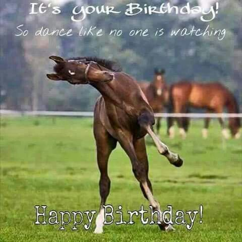 Best 25 Happy birthday horse ideas – Dancing Baby Birthday Card