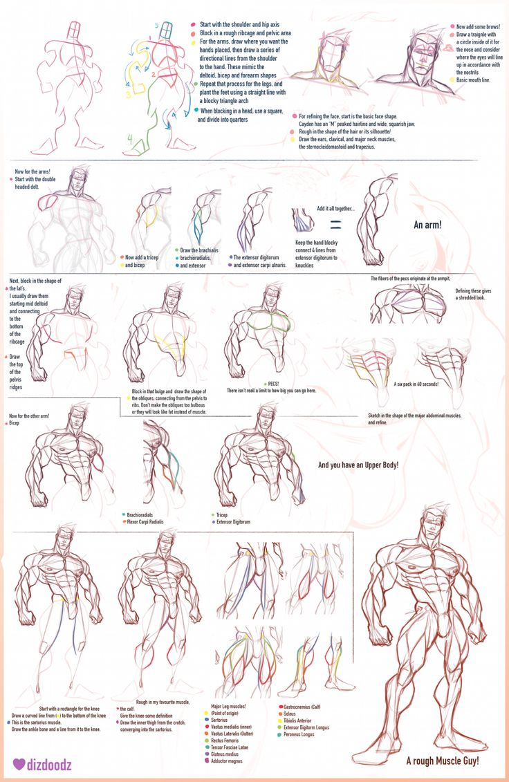 74 Best Images About Figure Drawing On Pinterest Figure