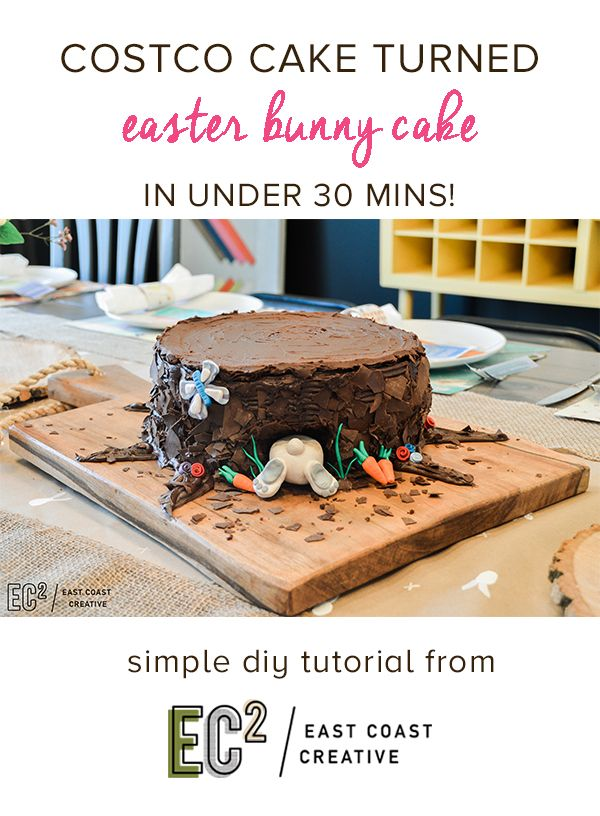 Easter Cake DIY.  Turn a store bought cake into this adorable bunny cake!  No special skills required- super easy and cute!  Creative Cake Ideas