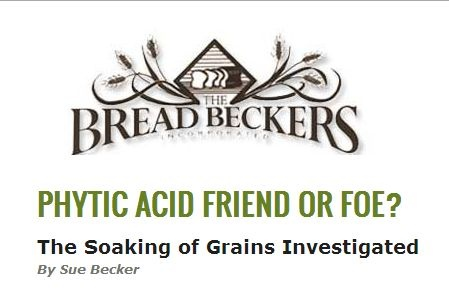 The Bread Beckers: Phytic Acid - Friend or Foe?  The Soaking of Grains Investigated by Sue Becker
