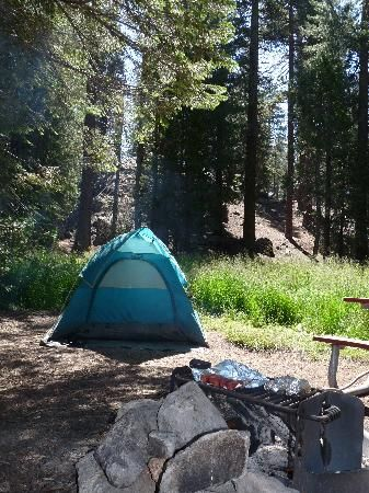 Azalea Campground in Kings Canyon National Park in California (Redwoods 2  hours east of Fresno