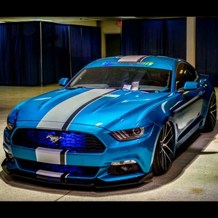 Luxury Car Obsession: 1917 Best Images About Mustang Obsessed On Pinterest