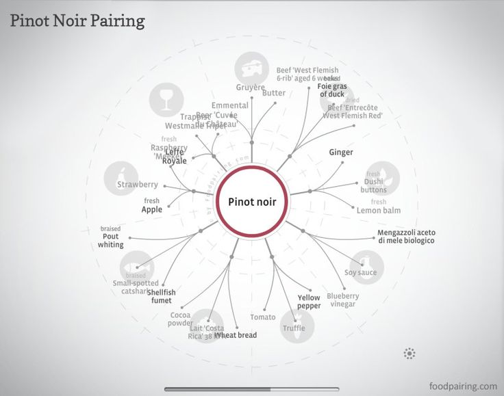 "[infographic] ""Pinot Noir Pairing with Vegetarian fare"" Jun-2014 by Foodpairing.com"