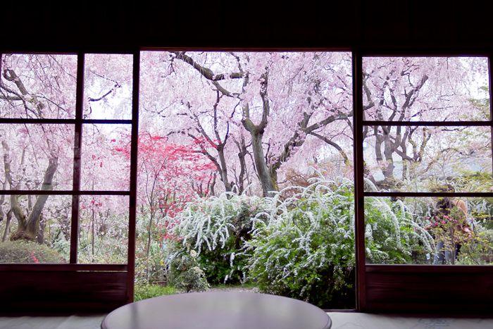 Haradani-en Kyoto 原谷苑のお食事処