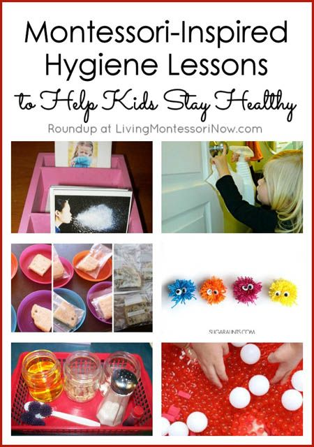 What parent (or teacher) doesn't dread the cold and flu season for kids? Here you'll find lots of Montessori-inspired handwashing and other hygiene activities for home or classroom. You'll also find activities and resources on germs and the immune system, including parts of the blood