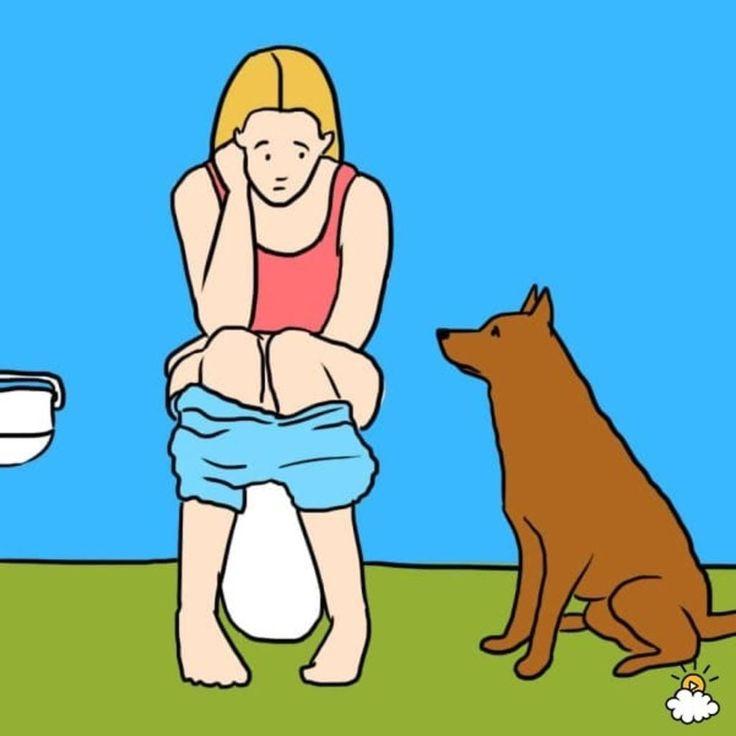 Best of Web Se seu cãozinho te segue até o banheiro, fique atento aos sinais. É isso o que ele está tentando te dizer
